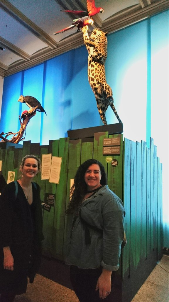 GCE students Lindsey Roche and Cait Salerno in front of the two natural predators of macaws - jaguar and harpy eagle